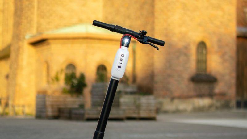 Castres : un service de location de trottinettes électriques testé en ville